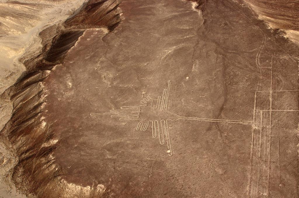 Le colibri, désert de Nazca.